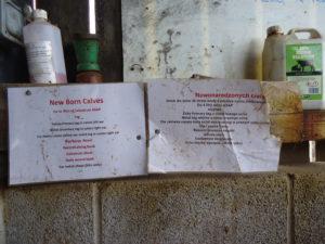 Brue Valley Farm. 1200 koeien met mozzarella en boter als neventak. Kenmerkend voor het bedrijf is het zeer sterke management m.b.v. strikte protocollen. Op de foto is een voorbeeld van een afkalfprotocol te zien.
