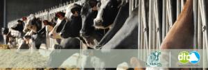 Liba en Dairy Training Centre slaan de handen in mekaar voor professionele opleidingen