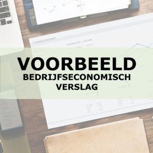 Voorbeeld van een Bedrijfseconomisch Verslag | Liba Advisering