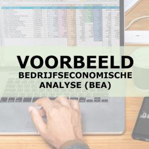 Voorbeeld van een Bedrijfseconomische Analyse (BEA) | Liba Advisering